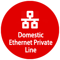 Domestic Ethernet Private Line