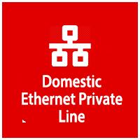 Domestic Ethernet Private Line